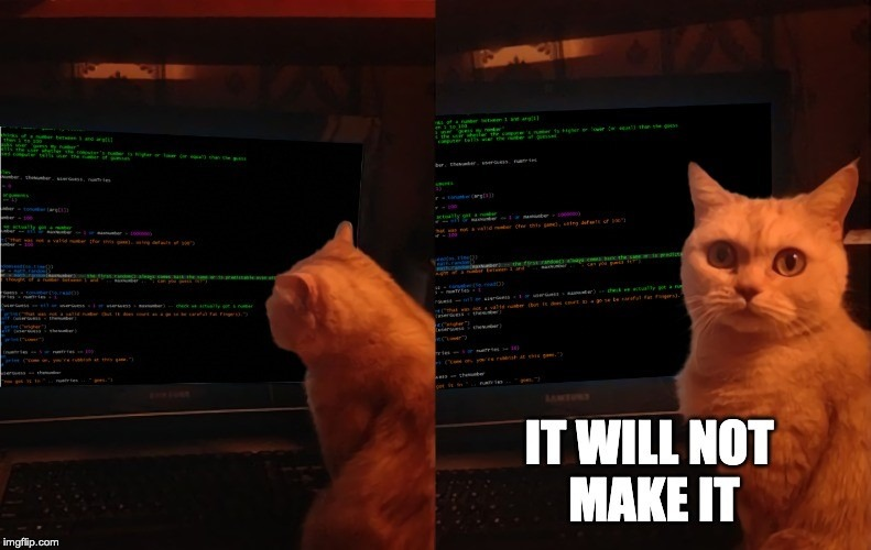 Funny cat image: check meme it wont make it