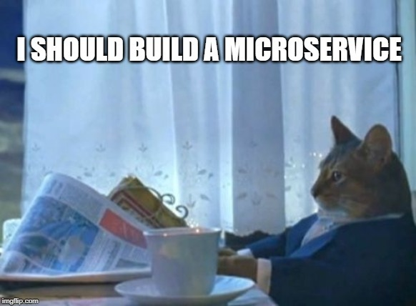cat ina suit with a newspaper thinking: i should build a microservice