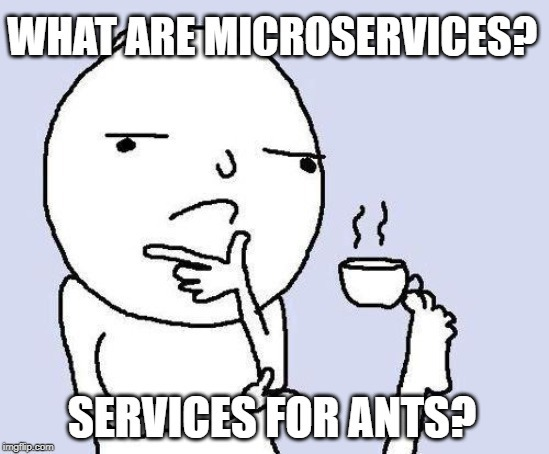 person thinking with a caption: what are microservices? services for ants?