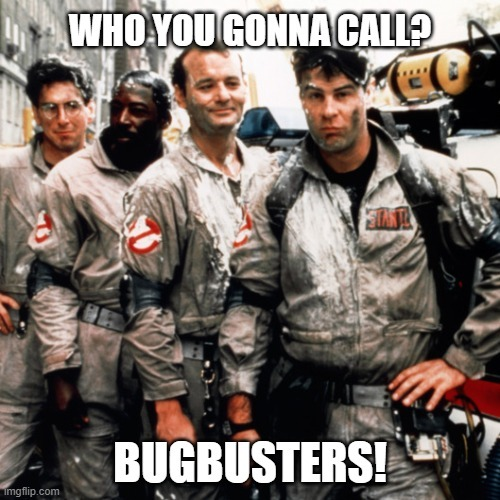 Software development team structure bugbusters meme