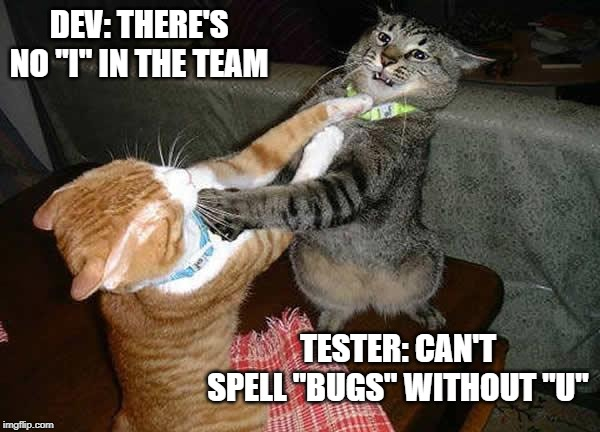 software development consulting services meme developers and QAs having a catfight